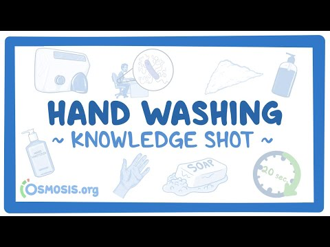 Knowledge Shot: Hand Washing